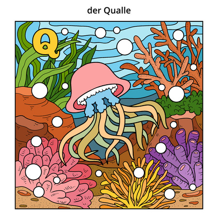jelly fish: German alphabet, vector illustration (letter Q). Color image (jelly fish and background)