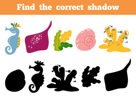 scat: Find the correct shadow, education game for children. Vector color set of sea life, sea horse, shell, crab, coral, scat Illustration