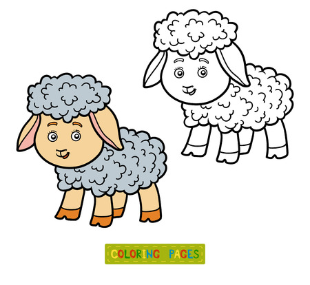 coloration: Coloring book for chilren, coloring page with little sheep