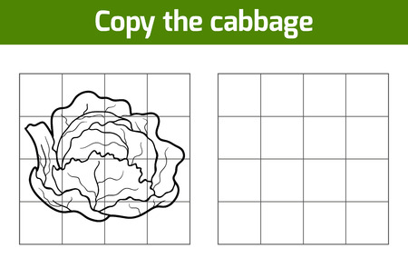 fruit illustration: Copy the picture, education game for children. Fruits and vegetables, cabbage