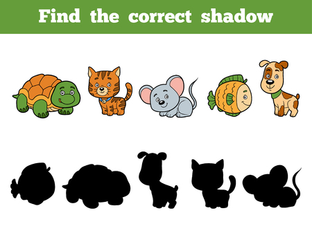 cat and mouse: Find the correct shadow, education game for children. Animal collection with turtle, cat, mouse, fish, dog Illustration