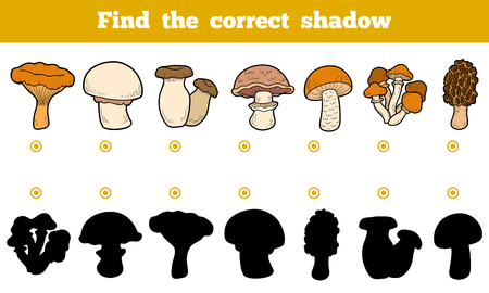 morel: Find the correct shadow, education game for children. Set of edible mushrooms. Illustration