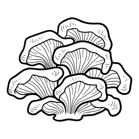 Coloring book for children. Edible mushrooms, oyster