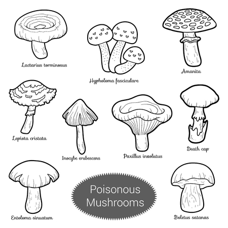 uneatable: Black and white set of poisonous mushrooms, coloring page with different fungi