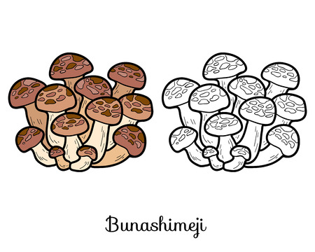 edible: Coloring book for children. Japanese edible mushrooms, bunashimeji