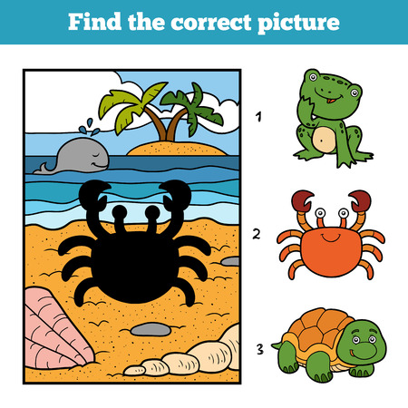 Find the correct picture, education game for children. Little crab and background