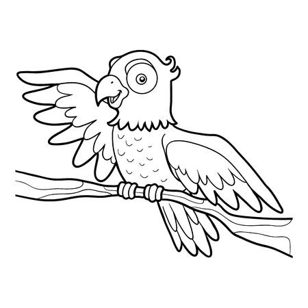 Coloring book for children, Parrot Illustration