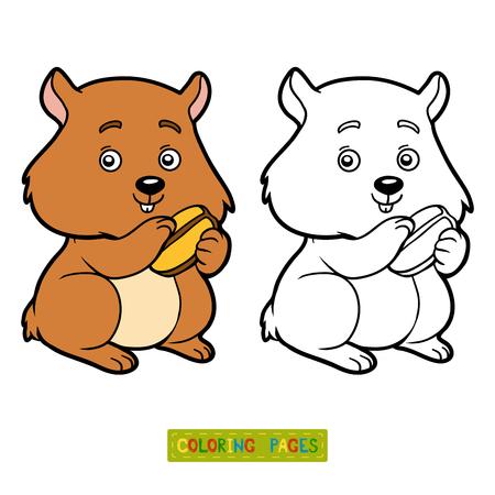 coloration: Coloring book for children, Hamster Illustration