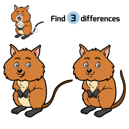 Find differences, education game for children, Quokka Illustration