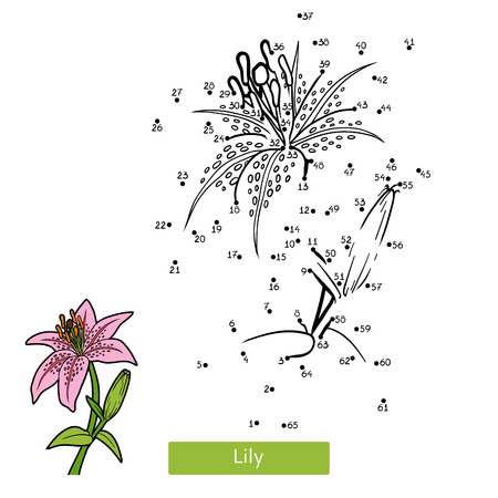 Numbers game, education dot to dot game for children, flower Lily Illustration