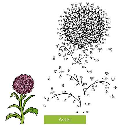 Numbers game, education dot to dot game for children, flower Aster