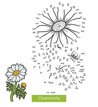 Numbers game, education dot to dot game for children, flower Chamomile