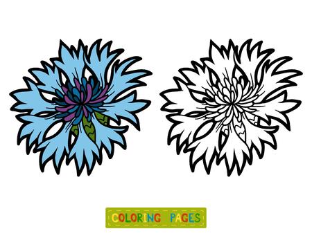livre à colorier pour les enfants, fleur Bleuet