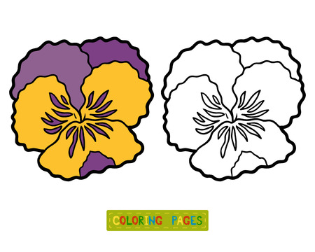 Coloring book for children, flower Pansy Illustration