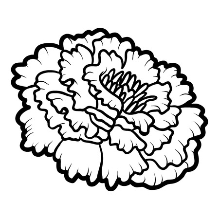 Coloring book for children, flower Marigold