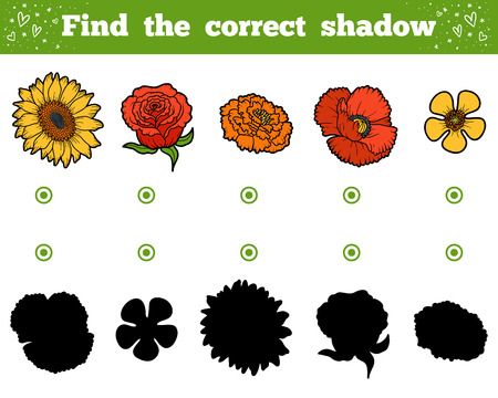 buttercups: Find the correct shadow, education game for children. Set of flowers Illustration