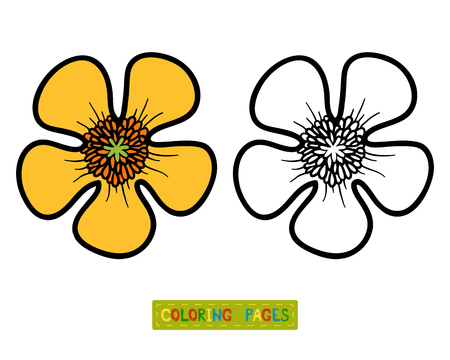 Coloring book for children, flower Buttercup