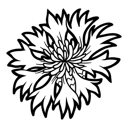 Coloring book for children, flower Cornflower Illustration