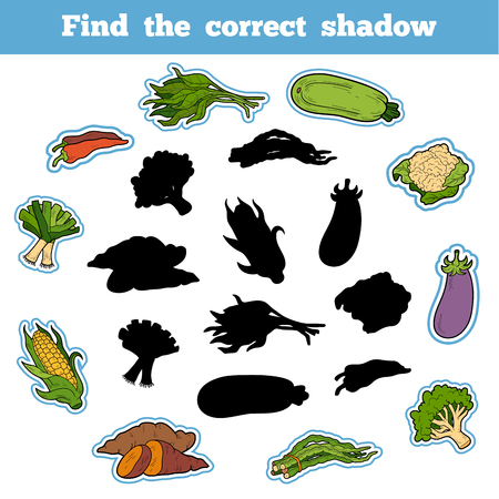 long bean: Find the correct shadow, education game for children. Thai Vegetables Illustration