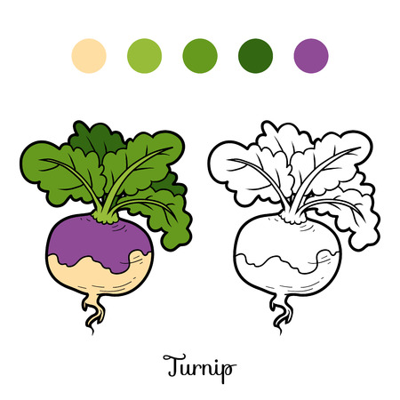 turnip: Coloring book for children, vegetables, Turnip