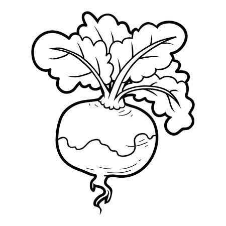 turnip: Coloring book for children, vegetables, Turnip