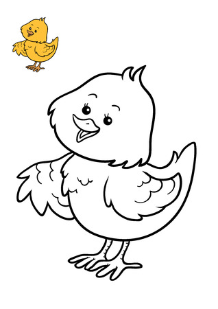 Coloring book for children, Chicken Stock Photo