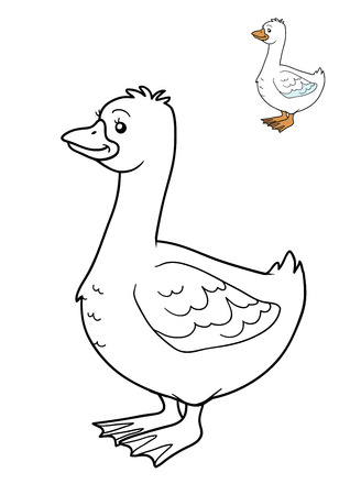 coloration: Coloring book for children, Goose