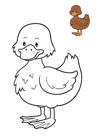 Dibujo Para Colorear Para Niños, Duck Fotos, Retratos, Imágenes Y ...