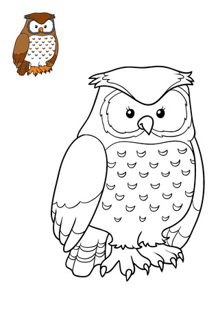 Coloring book for children, Owl