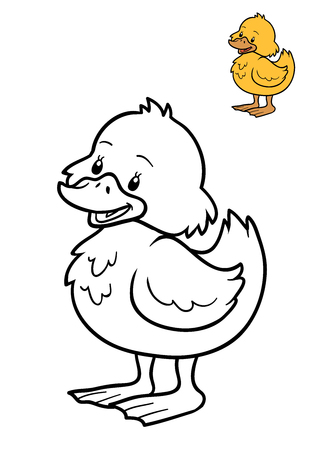 drake: Coloring book for children, Duck