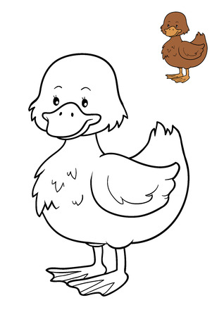 Coloring book for children, Duck