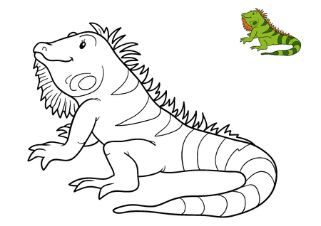 Coloring book for children, Iguana
