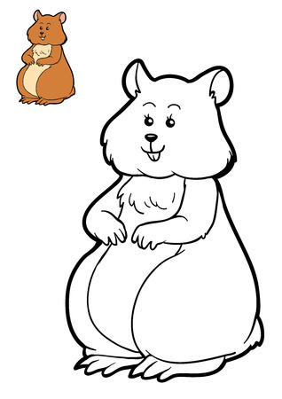 Coloring book for children, Hamster Stock Photo