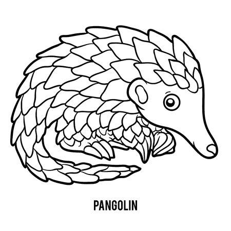Coloring book for children, Pangolin
