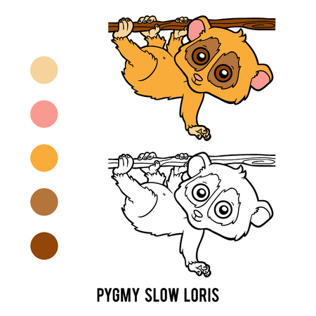Coloring book for children, Pygmy slow loris Illustration