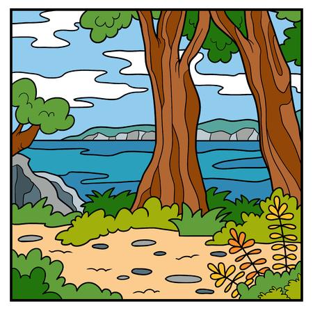 new zealand landscape: Vector illustration, natural background. Australian coast, summer day