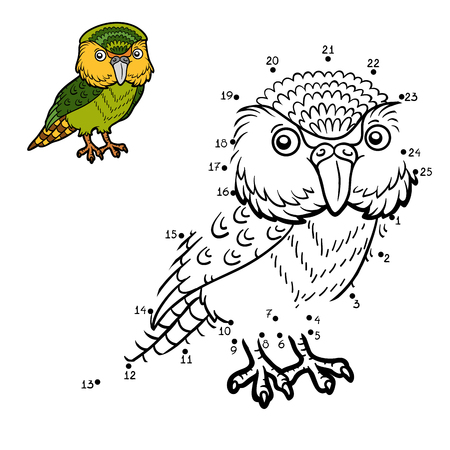 Numbers game, education dot to dot game for children, Kakapo