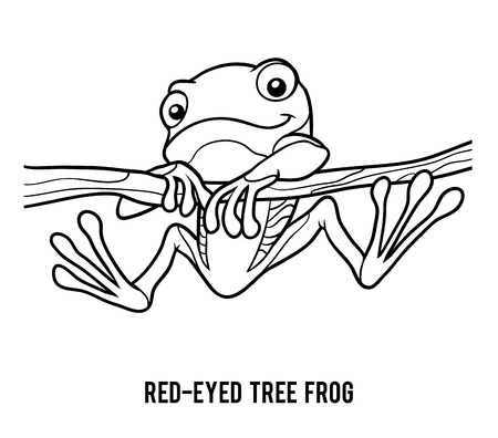 red eyed tree frog: Coloring book for children, Red-eyed tree frog