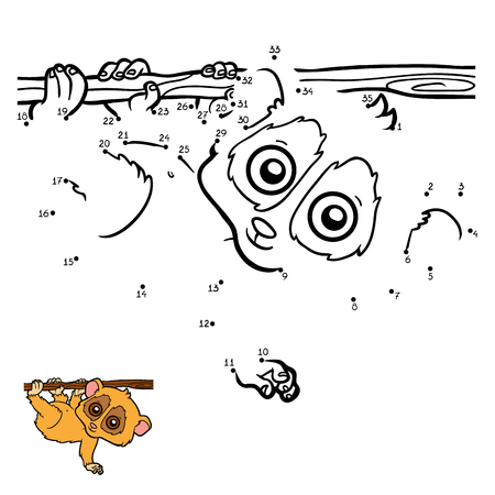 pygmy: Numbers game, education dot to dot game for children, Pygmy slow loris