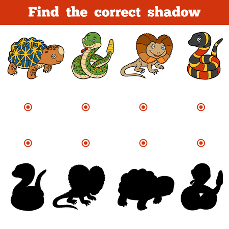 frilled: Find the correct shadow, education game for children. Vector set of animals