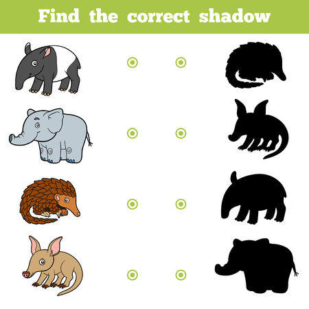 aardvark: Find the correct shadow, education game for children. Vector set of animals