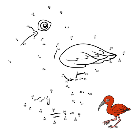 Numbers game, education dot to dot game for children, Scarlet ibis