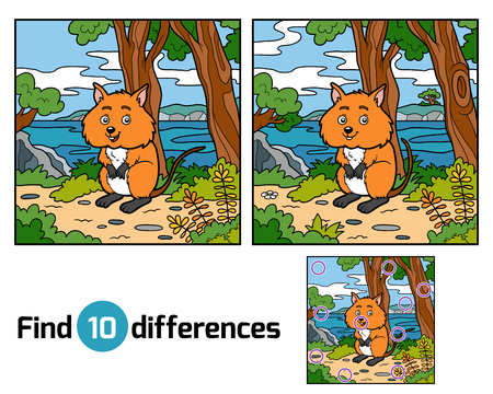 new zealand landscape: Find differences education game for children, Quokka