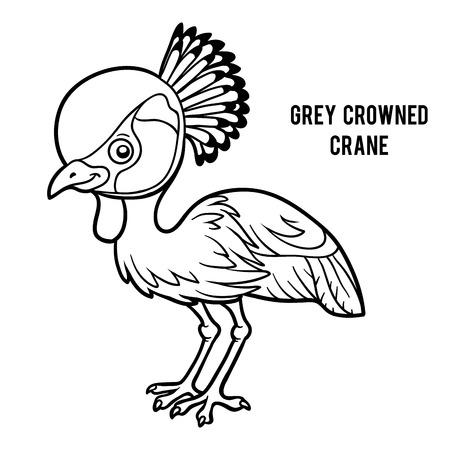 Coloring book for children, Grey crowned crane Illustration