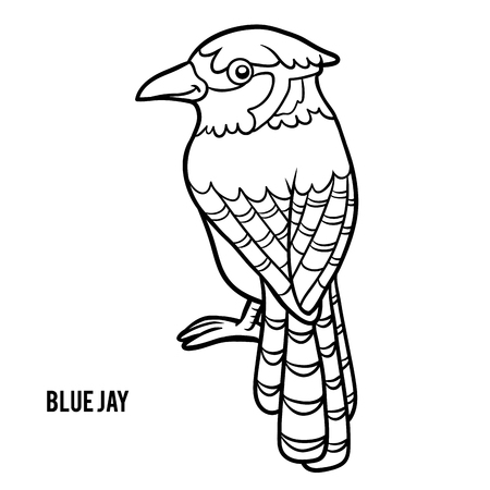 passerine: Coloring book for children, Blue jay