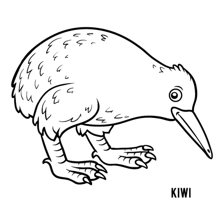 Coloring Book For Children Kiwi Royalty Free Klipartlar Vektör