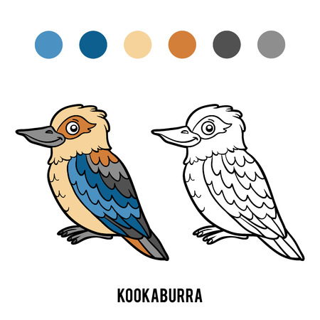 Coloring book for children, Kookaburra Illustration