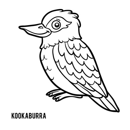 136 Kookaburra Stock Illustrations Cliparts And Royalty Free