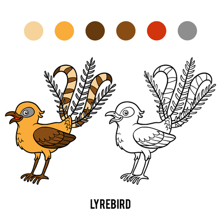 Coloring book for children, Lyrebird