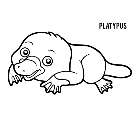 coloration: Coloring book for children, Platypus